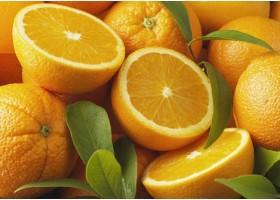 Βιταμίνη C - Απαραίτητη για ένα υγιές ανοσοποιητικό σύστημα!